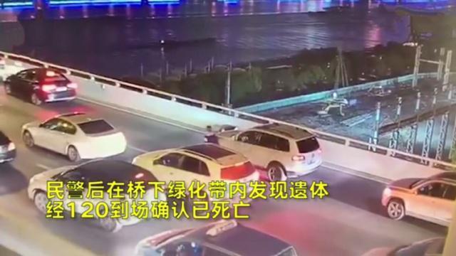 上海17岁男孩跳桥身亡原因揭秘 卢浦大桥跳桥少年与母亲最新消息 男孩