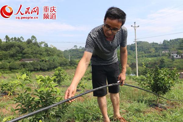 果农刘正辉:我是赶上好时候 我有3个没想到