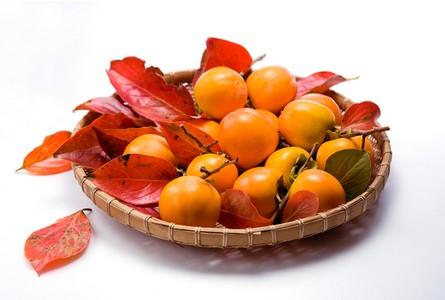 元氏大红袍柿:肉细味甘无籽 宜鲜食