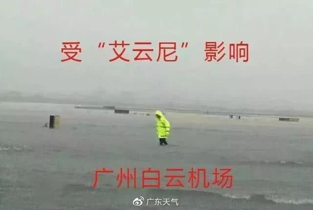 海上台风混战,剑鱼徘徊打转,直呼:我太难了!